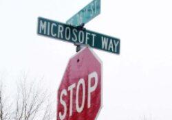 Microsoft kontra holland édesanya